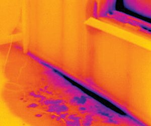 B 0413 Thermal Imaging6 300x250 - Services