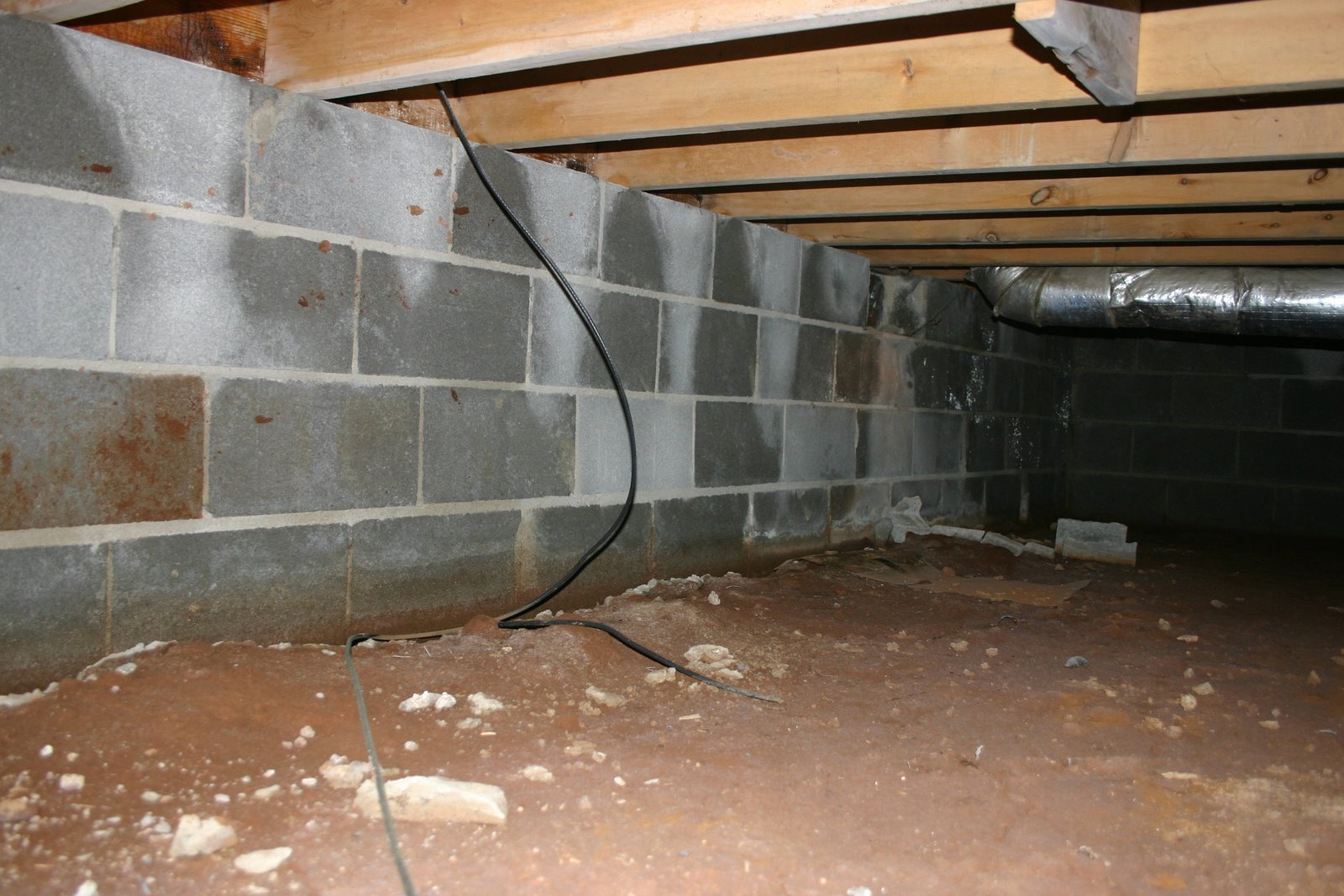 crawl space - Services